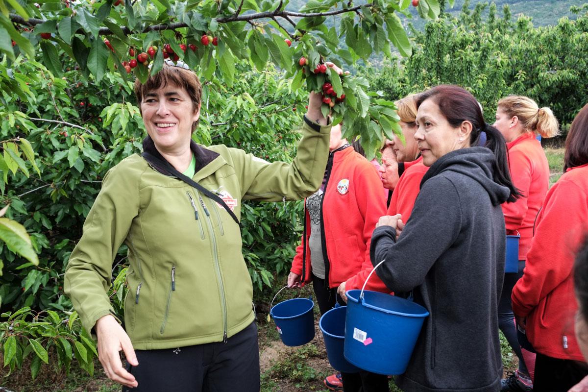 Dalila, guía de ValleAventura, explica cómo recoger la fruta del árbol.