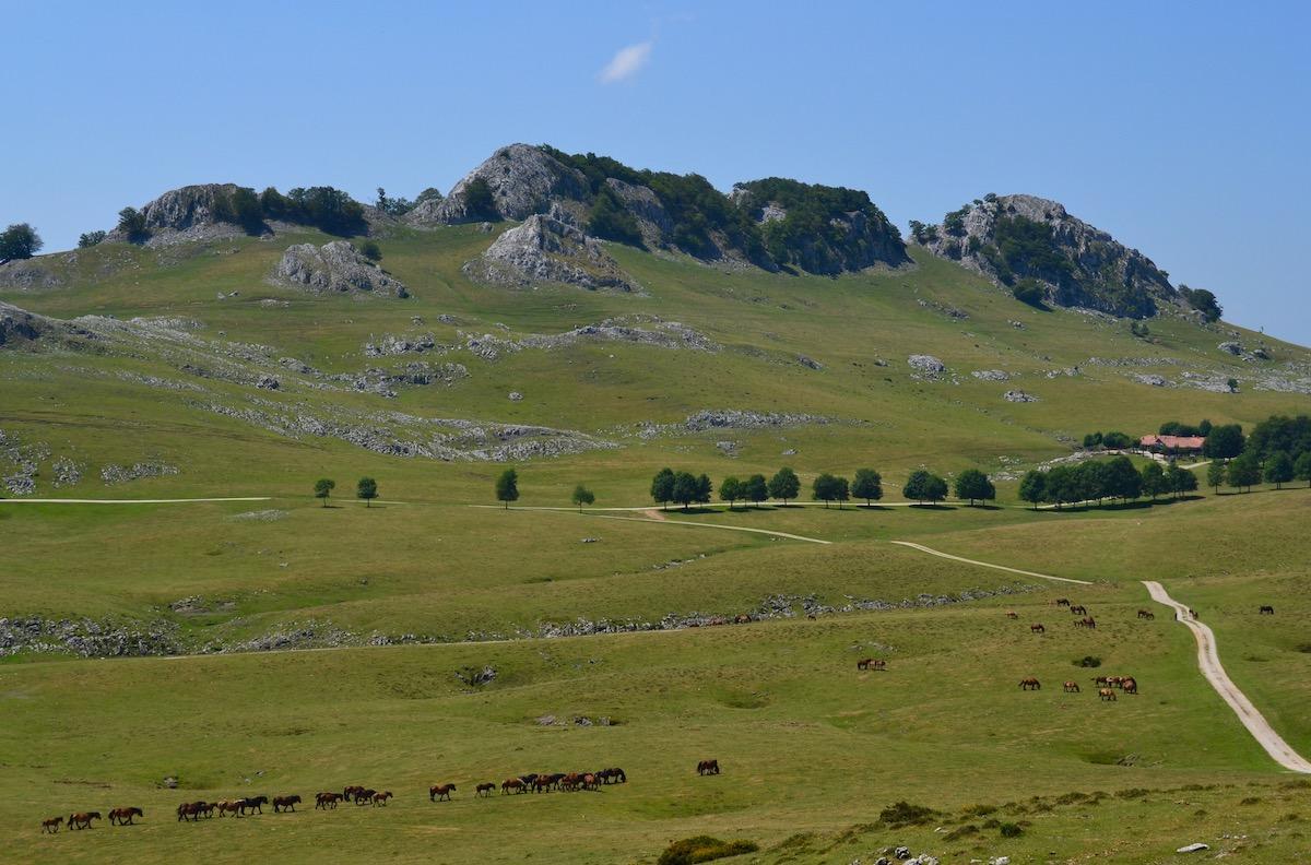 Las llanuras y los pastos del valle de Urbia, descendiendo de la sierra.