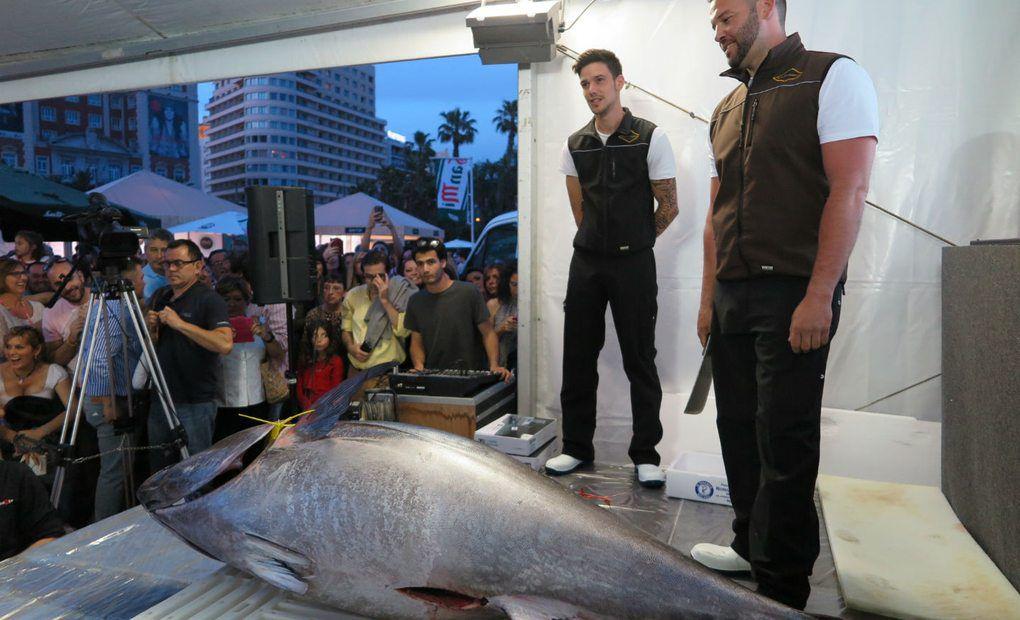 Ronqueo de atún rojo de casi 200 kilos
