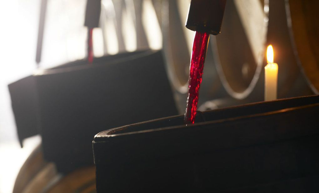 Proceso de elaboración del vino