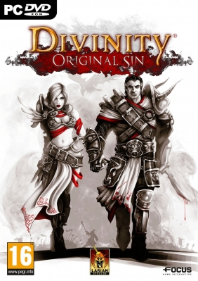 Divinity: Original Sin PC Digital cover