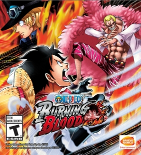 One Piece: Burning Blood PC Digital cover