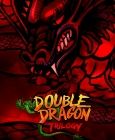 Double Dragon Trilogy PC Digital