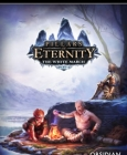 Pillars of Eternity - The White March Part I Steam Key