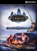 Pillars of Eternity - The White March Expansion Pass  PC  Digital