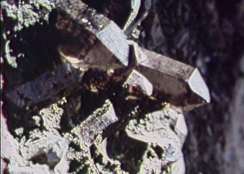 Cristalla tarlischonta - ils cavacristallas