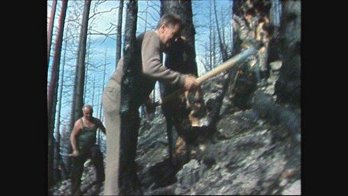 Incendi da guaud en Val Müstair