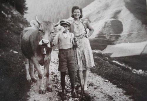 A pèr culla vacca sil crest da tgauras