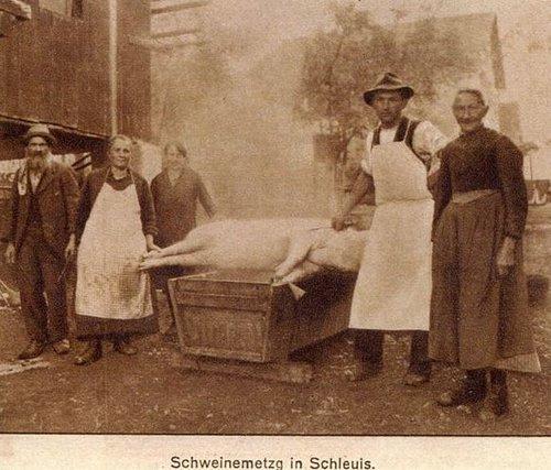 Mezga da casa a Schluein