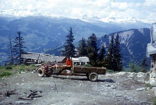 Alp de Pitasch, alp Sura, ne alp Dado