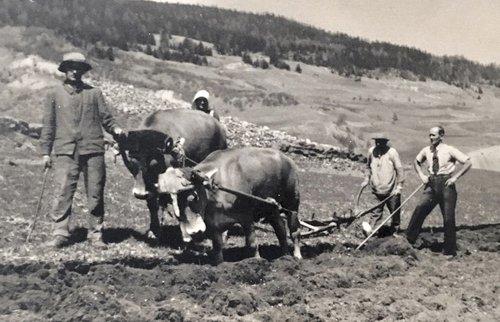 Famiglia Devonas da Riom 1935