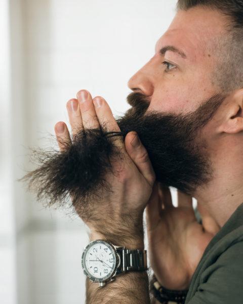 Solomon's Beard partaöljy