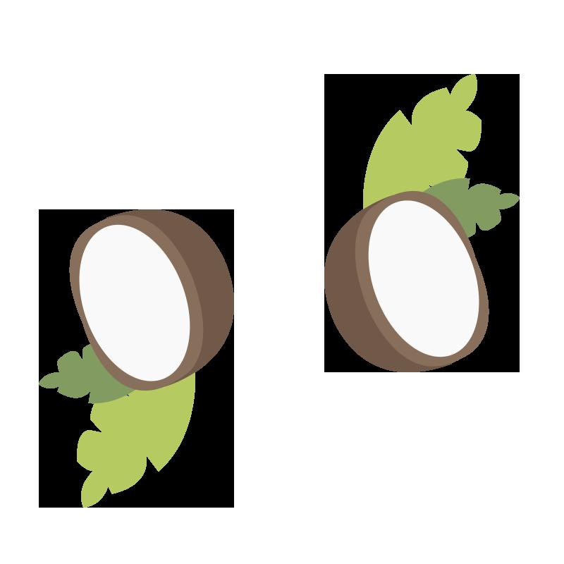 Coconut oil small illustrations