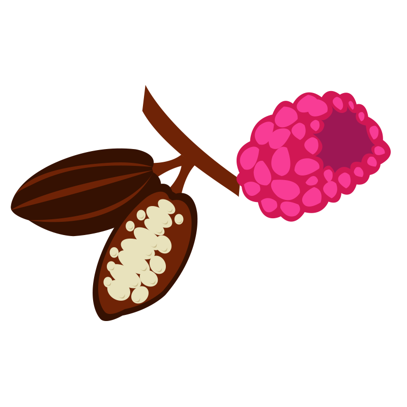 Agave chocolate and raspberry sauce illustration