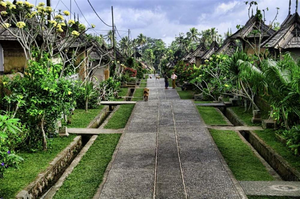 Hoogtepunten van Bali Tour