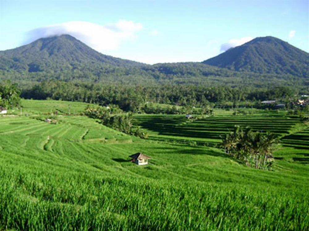 Bezoek het beste van landelijk Bali