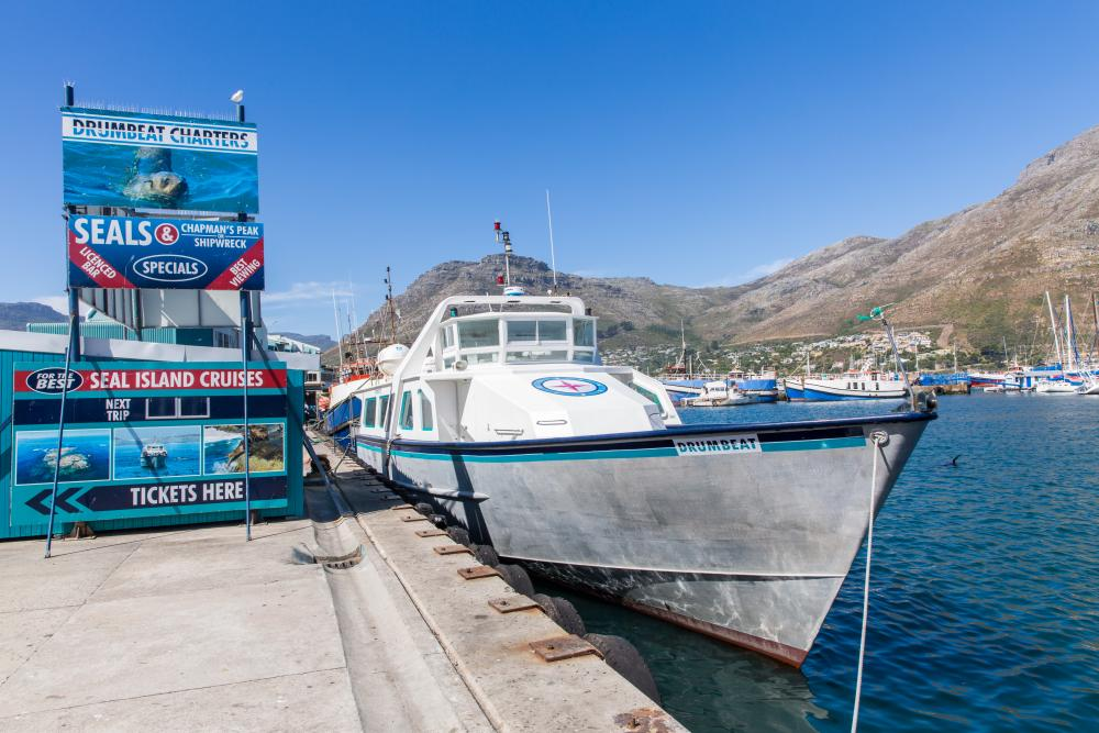 Cruise naar Seal Island