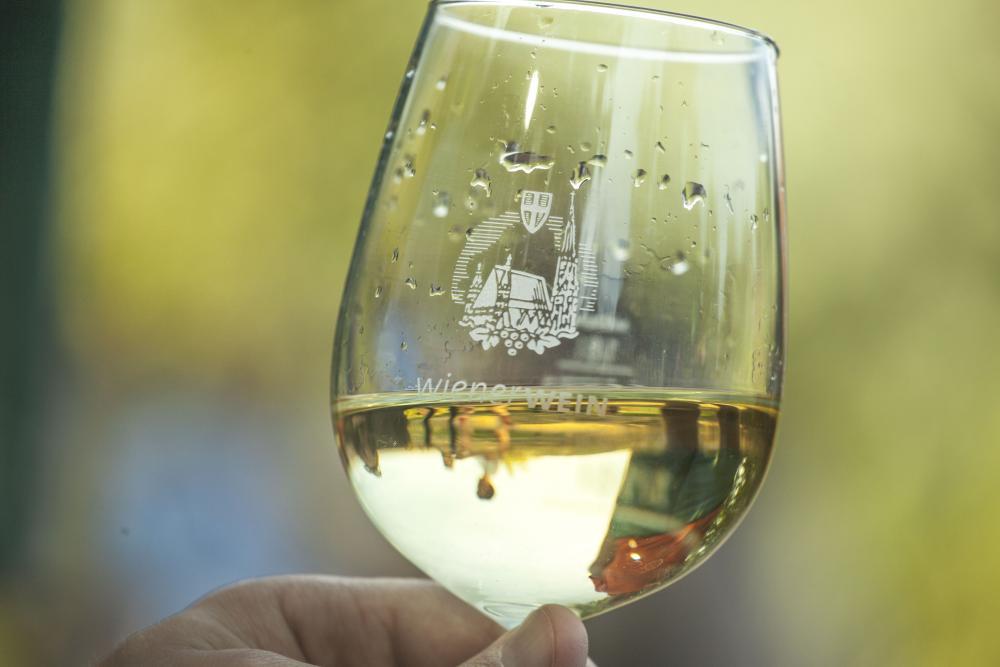Wijnwandeling