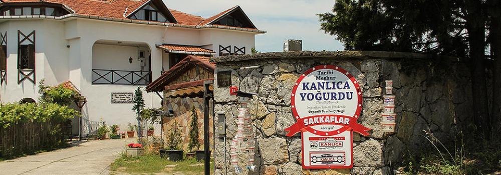 Proef de lokale yoghurt in Kanlıca