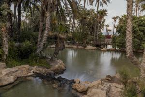El Palmeral Park