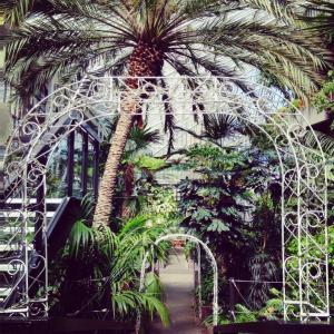 Ontdek de verborgen tropische oase in de Barbican Garden Room