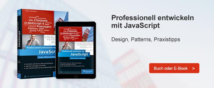 Professionelles JavaScript