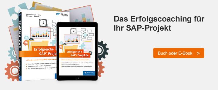 SAP-Projekte