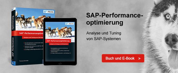 SAP-Leistung optimieren