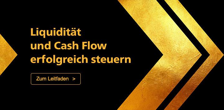 Liquidität und Cash Flow erfolgreich steuern. Zum Leitdafen >