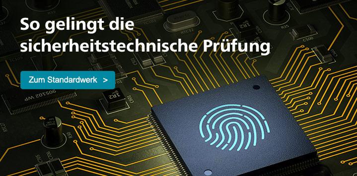 Das Standardwerk zur Sicherheit und Prüfung von SAP-Systemen >