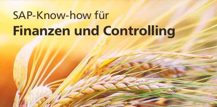 SAP-Know-how für Finanzen und Controlling