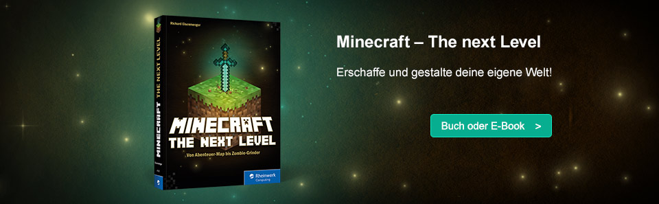 Minecraft – The next Level