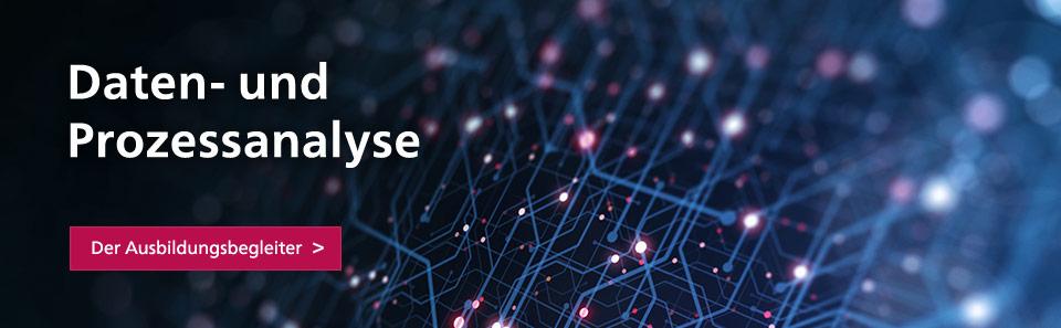 Daten- und Prozessanalyse