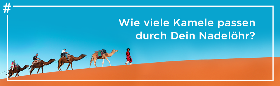 Die nächste Rheinwerk Konferenz >>>