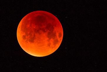 Der rot gefärbte Mond, aufgenommen mit einem Teleobjektiv