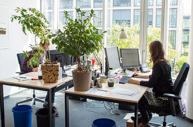 Helle Büros, lockere Atmosphäre