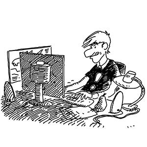 Schrödinger beim Programmieren lernen