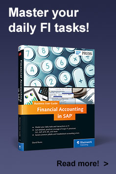 Financial Accounting in SAP: Business User Guide