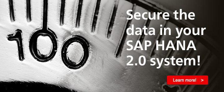 SAP HANA 2.0 Security