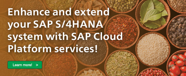 Customize SAP S/4HANA