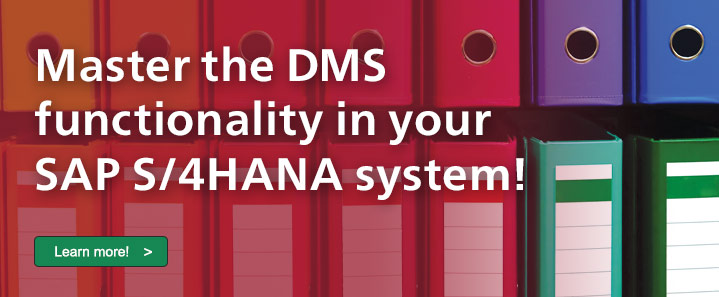 DMS with SAP S/4HANA
