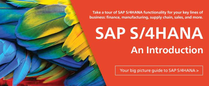 SAP S/4HANA Intro