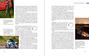 Bildunterschrift zur Leseproben-Auswahl (optional)