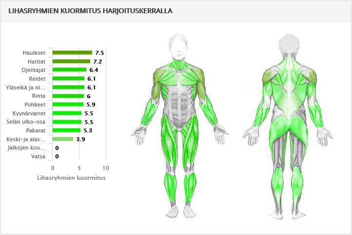 Lihaskuormitus