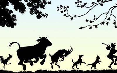 EXPRESIONES EN ESPAÑOL CON ANIMALES
