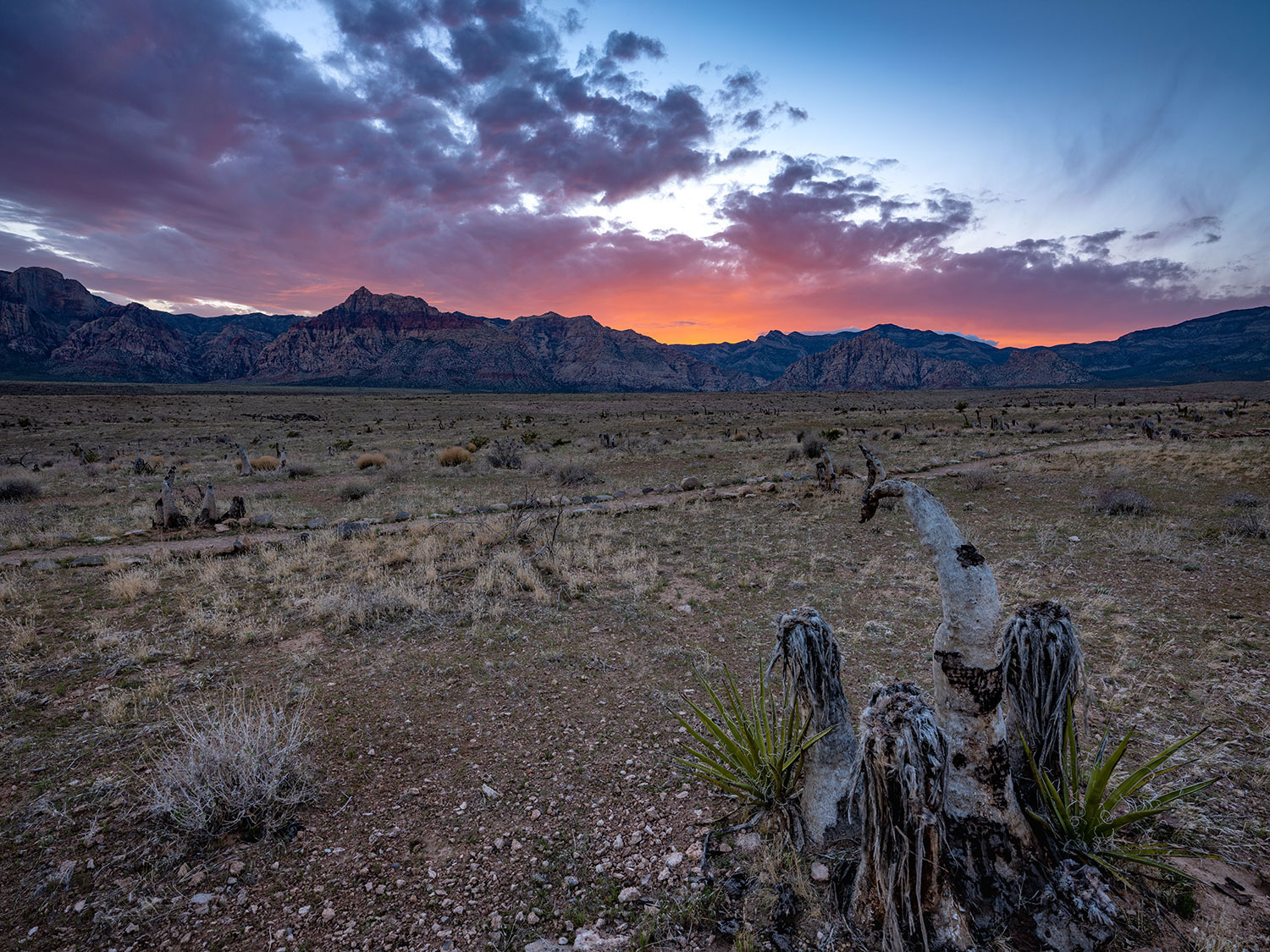 Sunset Red Rock Canyon