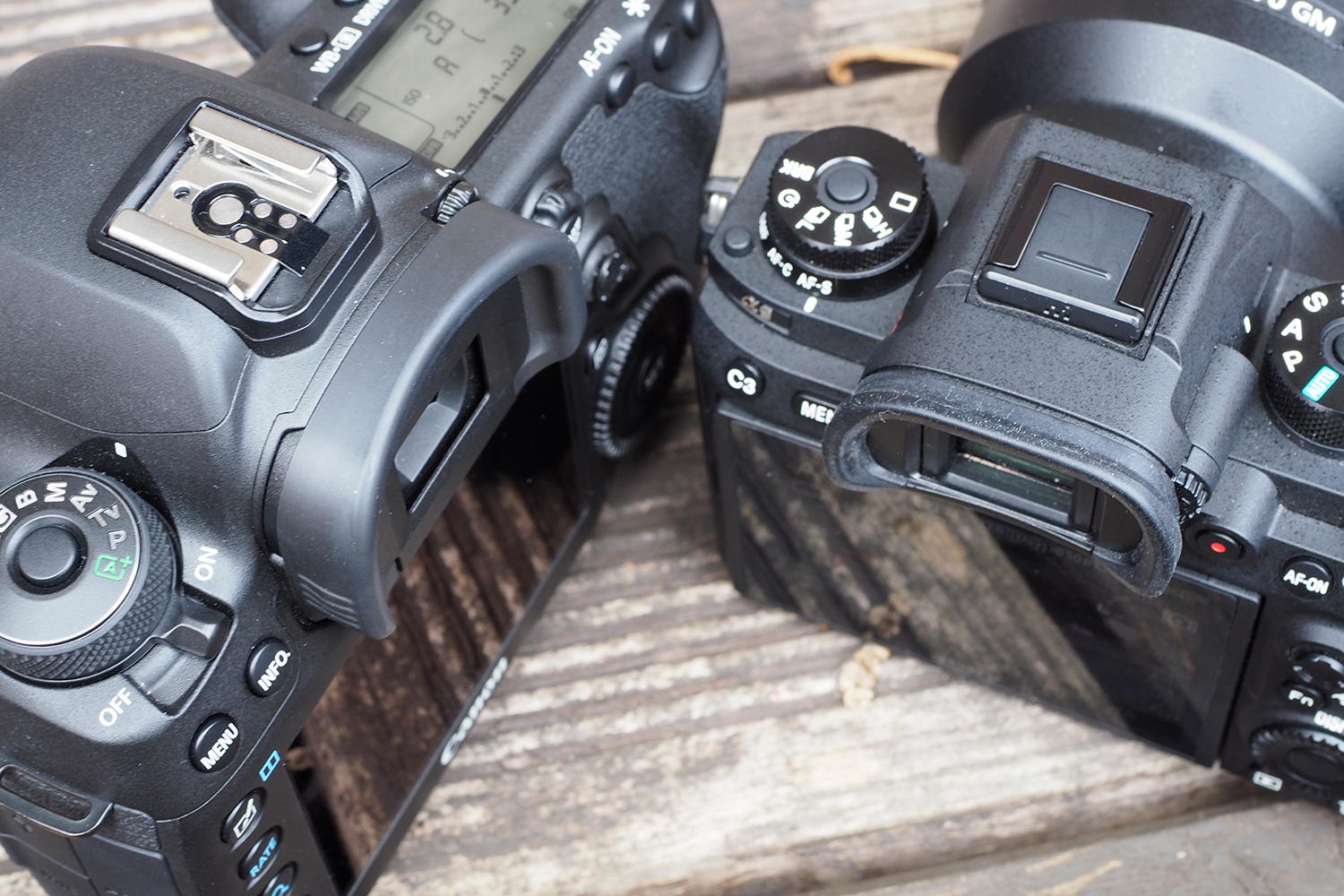 Canon 5D Mk 4 Sony a9 viewfinders