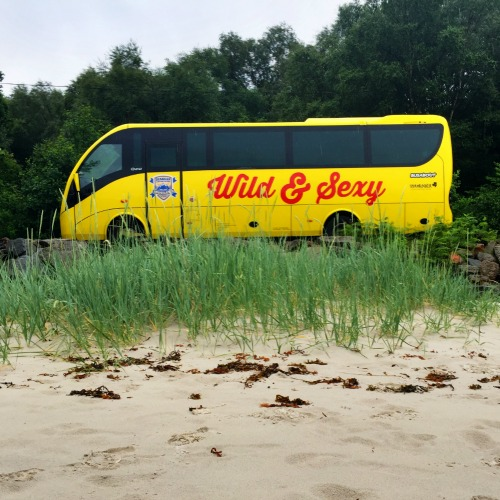 Haggis bus on the beach
