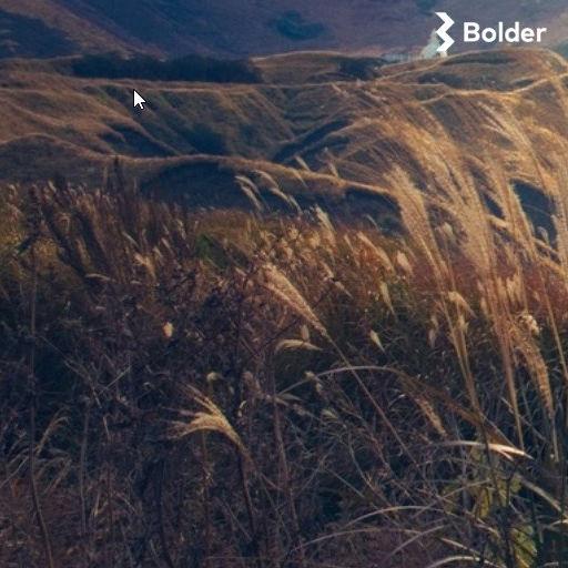 Bolder AS