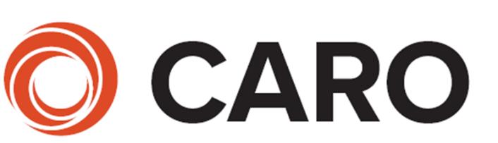 Dublin caro logo